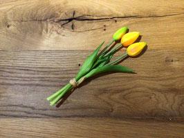 Tulpenbündel