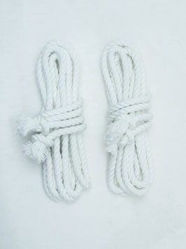 ロープ(4m×2)