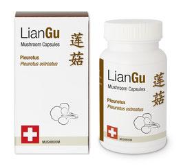LianGu Pleurotus Vitalpilz BIO Qualität