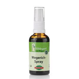 Posch Hildegard Wegerich Spray