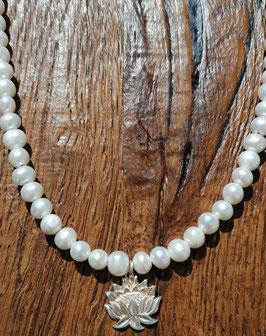 Halskette 42cm Süsswasserperlen