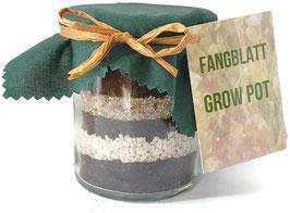 Fangblatt Grow Pot - Geschenkidee