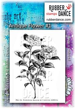 Antique Flower #1