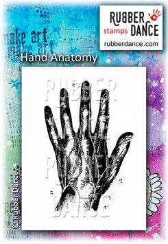 Hand Anatomi