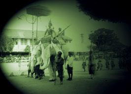 White elephants and King´s coronation