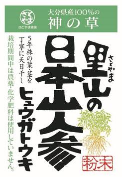 日本山人参(ヒュウガトウキ)100g×1袋