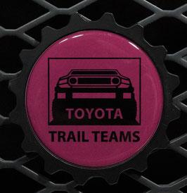 Black Cherry TT Classic - Black Truck