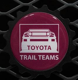 Black Cherry TT Classic - Silver Truck