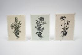 Kartenset aus Samenpapier - Andrea Noti
