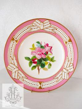 345. ②リボン&ピンクの手描きボタニカル約23cmプレート(英1860年頃)