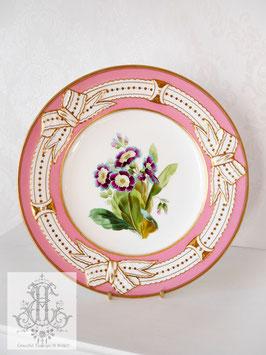 345. ➂リボン&ピンクの手描きボタニカル約23cmプレート(英1860年頃)