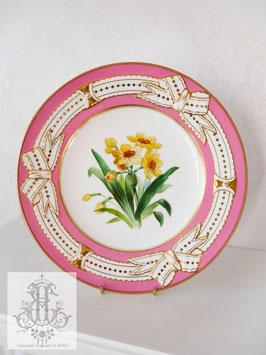 345. ④リボン&ピンクの手描きボタニカル約23cmプレート(英1860年頃)