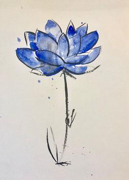 Flor2