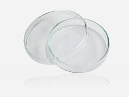 Petrischalen aus Glas 100 x 20 mm, 2-teilig