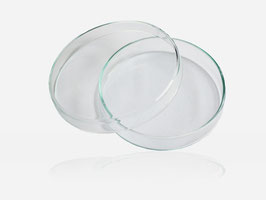 Petrischale aus Glas 100 x 20 mm