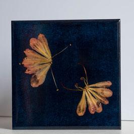 Schmetterlinge blau 03