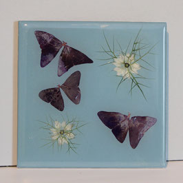 Schmetterlinge blau mini 02