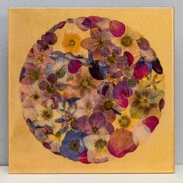 Planet Blütenreich