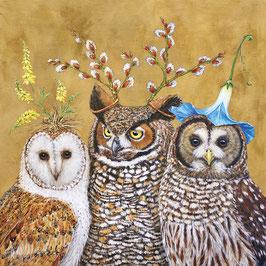 "Serviettenset ""Owl Family"", große Papierservietten"