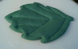 Blattbettchen klein dunkelgrün