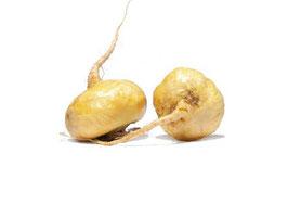 Maca  Lepidium Meyenii Walp 10:1 Extract 600mg Libido capsules