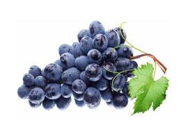 Druivenpit OPC 95 Extract en  Vit. C 500mg capsules