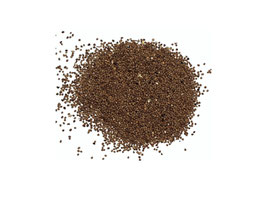 Semen Cuscutae 250mg Libido Extract capsules