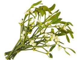 Maretak Mistletoe 400mg 10:1 Extract capsules