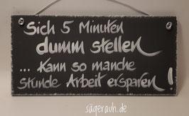 Sich 5 Minuten dumm stellen, kann so manche Stunde Arbeit ersparen!