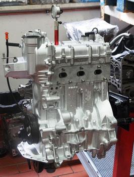 CGP zw. 60 u. 75 PS / 44 bis 55 KW
