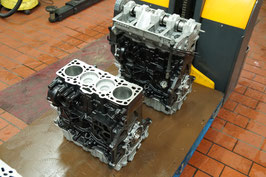 BLS 1.9 TDI 8V 77kW / 105 PS