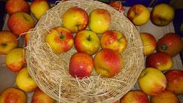 pomme choisir la variété