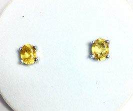 Studs with yellow sapphires