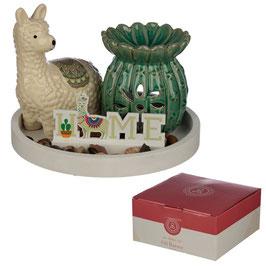 Eden Lama Kaktus Keramik Duftlampe Set