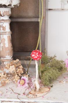 amanita muscaria small - bulb head