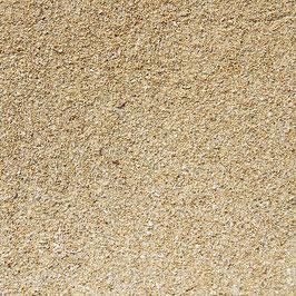 Sand Coast - Bella!