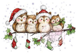 """Clearstamp """"Owls On Branch"""" - Wild Rose Studio's"""