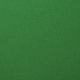 Cardstock Glatt - Broccoli