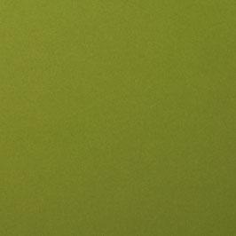 Cardstock Glatt - Olive