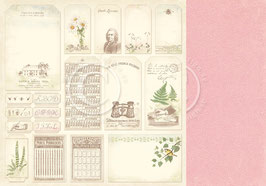Linnaeus Botanical Journal, Tags - Pion Design