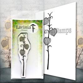 Fairy Lantern - Lavinia Stamps