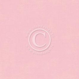 Pion Design Palette - Pion Pink II