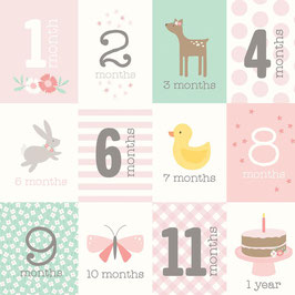 Month Baby Girl - American Crafts