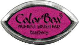 ColorBox Pigment Ink Cat's Eye, Razzberry - Clearsnap
