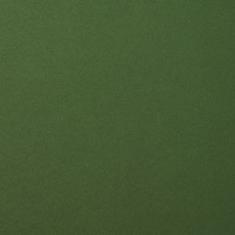 Cardstock Glatt - Pine