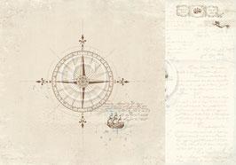 Legends of the Sea, Go east - Pion Design