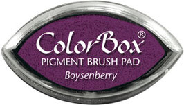 ColorBox Pigment Ink Cat's Eye, Boysenberry - Clearsnap
