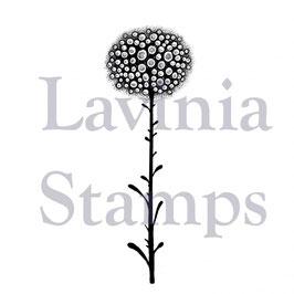 Single Glow Flower - Lavinia Stamps