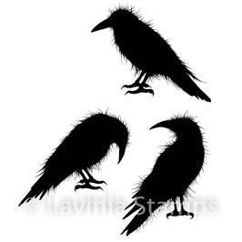 Crow Set - Lavinia Stamps