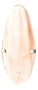 Sepia-Schale mit Halter
